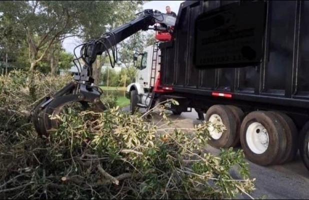 CITY BEGINS ROUND ONE OF WINTER STORM DEBRIS REMOVAL