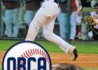 Newcastle Racer athletes garner baseball and softball honors